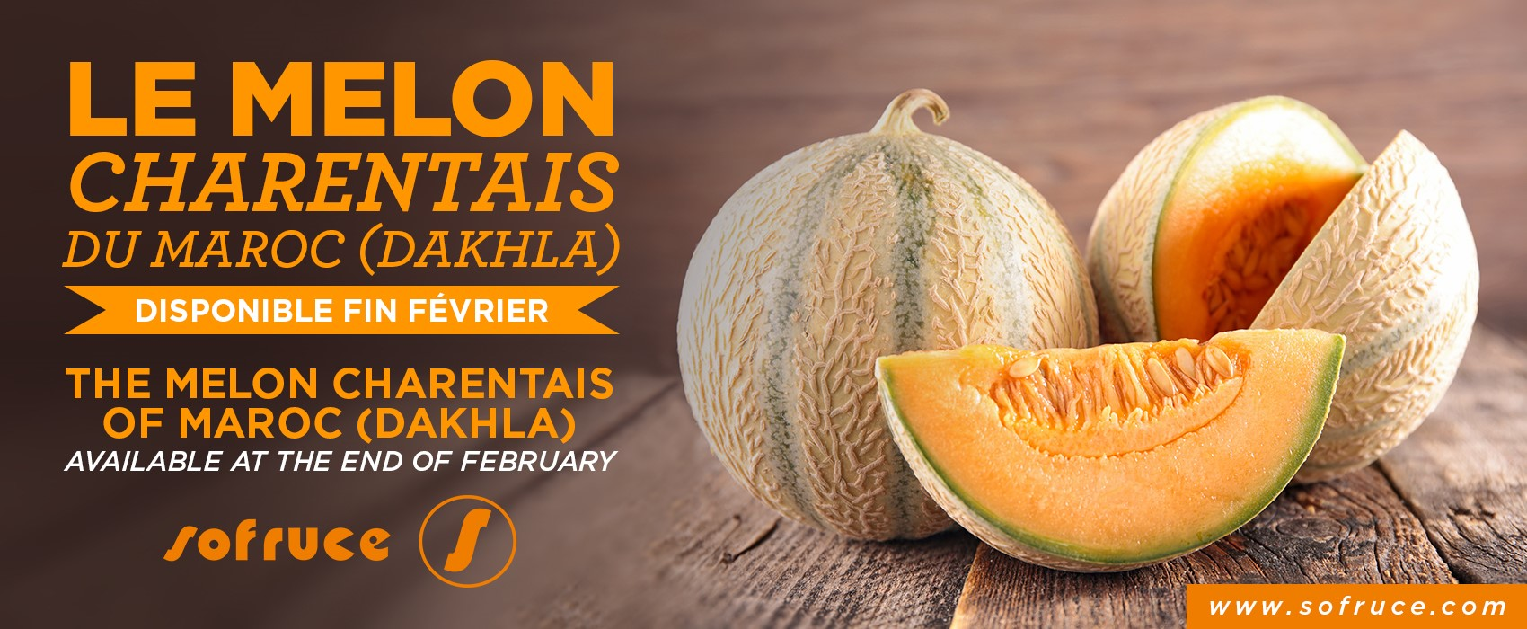 THE MELON CHARENTAIS AVAILABLE AT THE END OF FEBRUARY