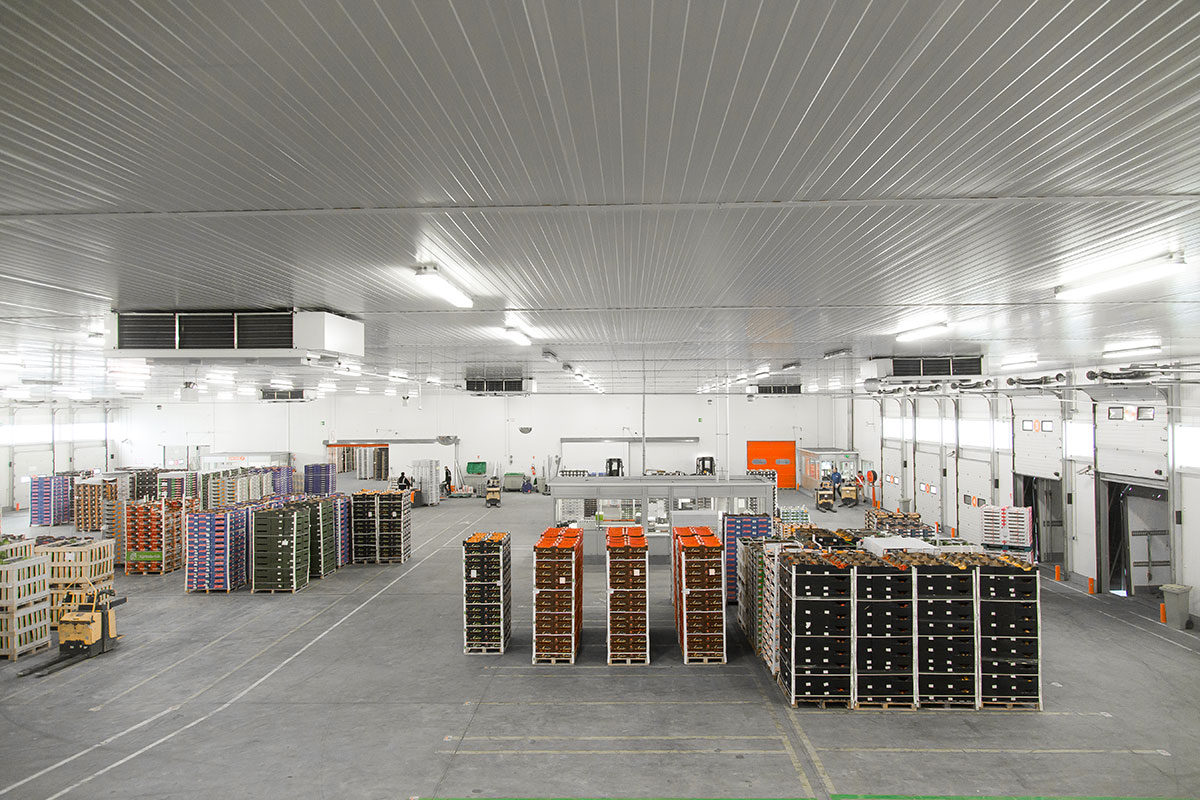 Storage / Warehousing